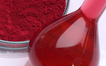 The initial report on the application of Hibiscus pigment as a red edible natural pigment